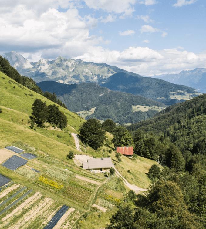 Domaine Clarins farm