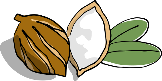 Moisture-Rich Body Lotion Shea Nut illustration