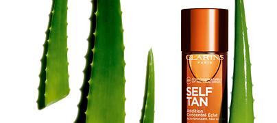 Aloe Vera Ingredient Visual – Active Packshot ACE Body